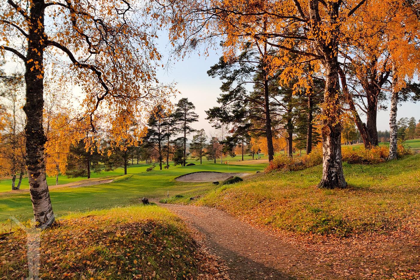 Östersund Frösö Golfklubb - Hål 17