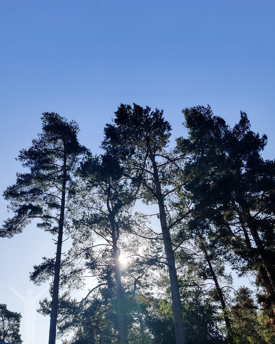 Strålande solsken utanför Åhus