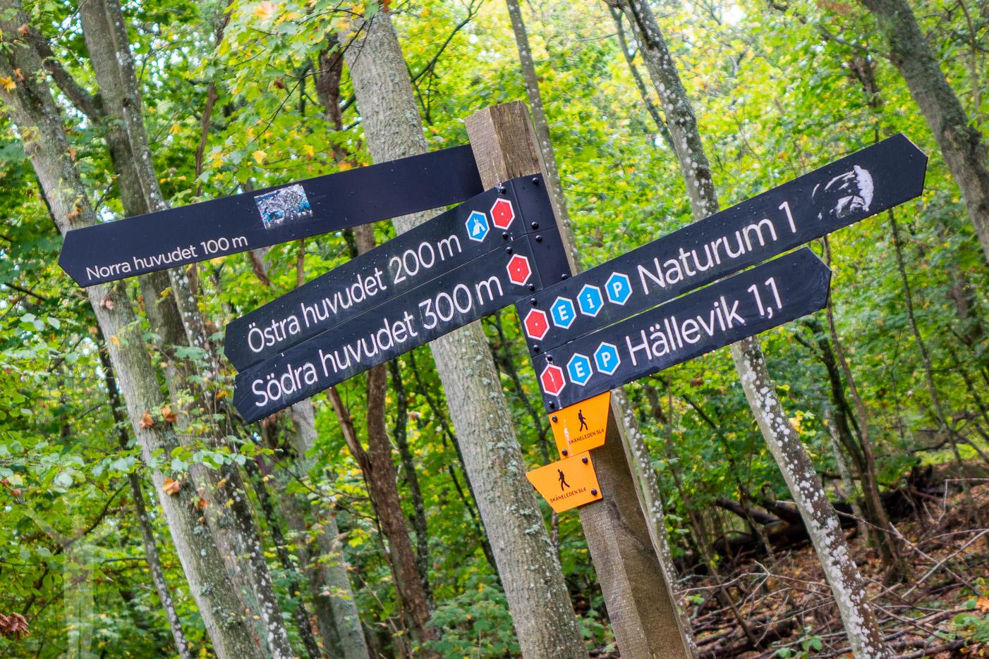 Vandringsled i Stenshuvud Nationalpark