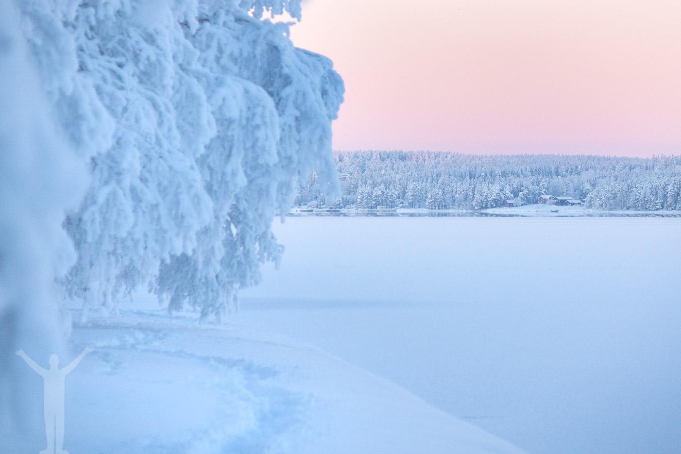 Frösön i vinterskrud