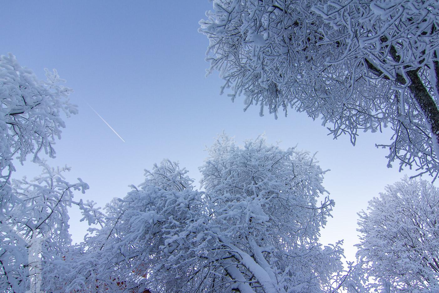 Winter på marken och blå himmel