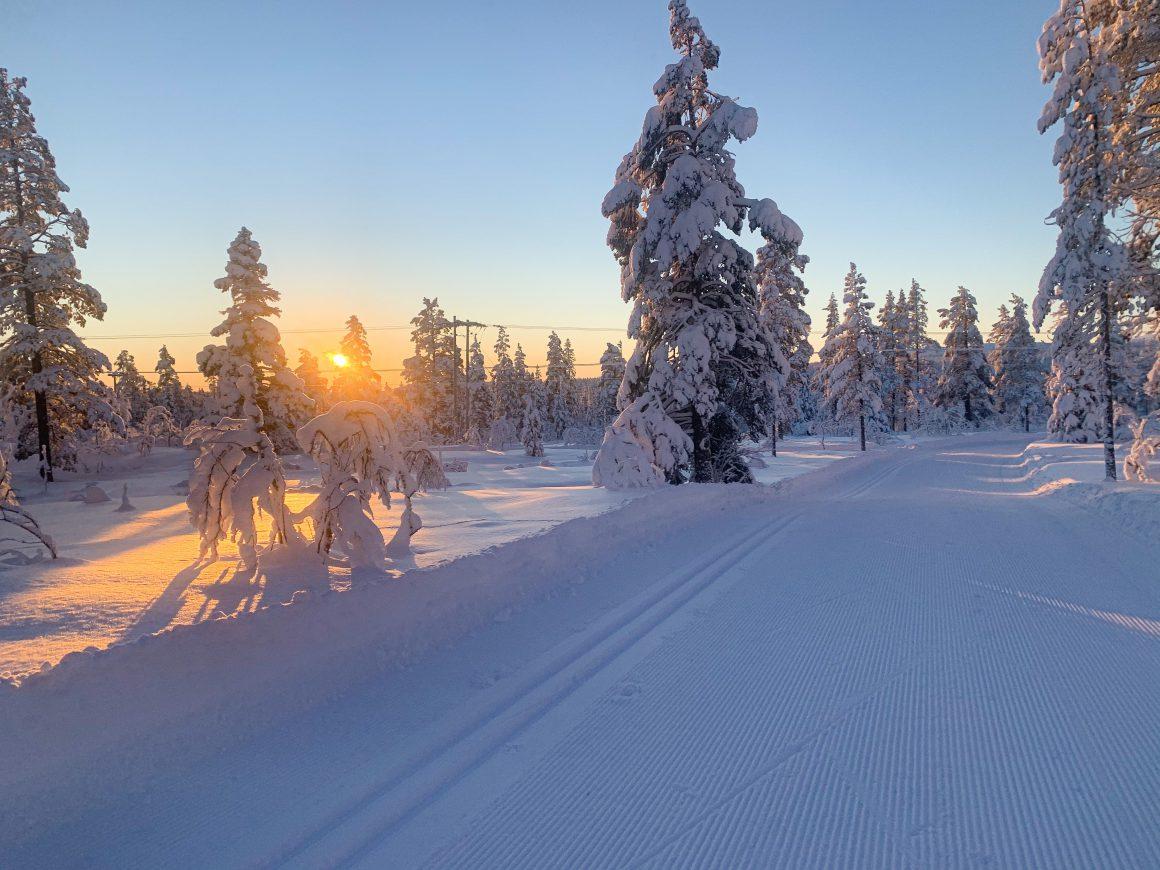 Längdskidor vid Storhogna. Foto: Helena Engqvist