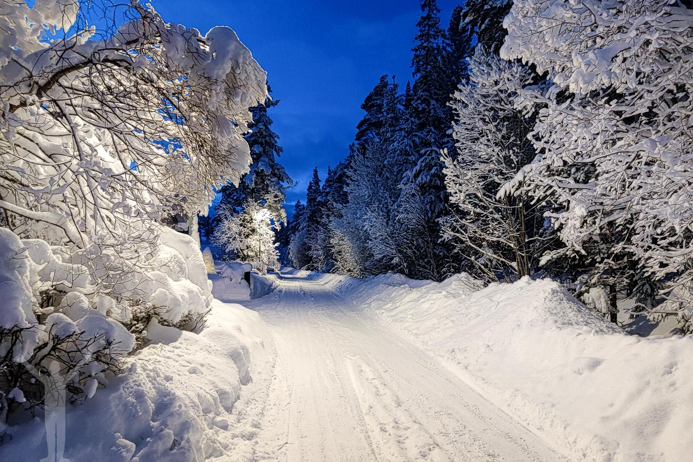 Lugnvik i vinterskrud