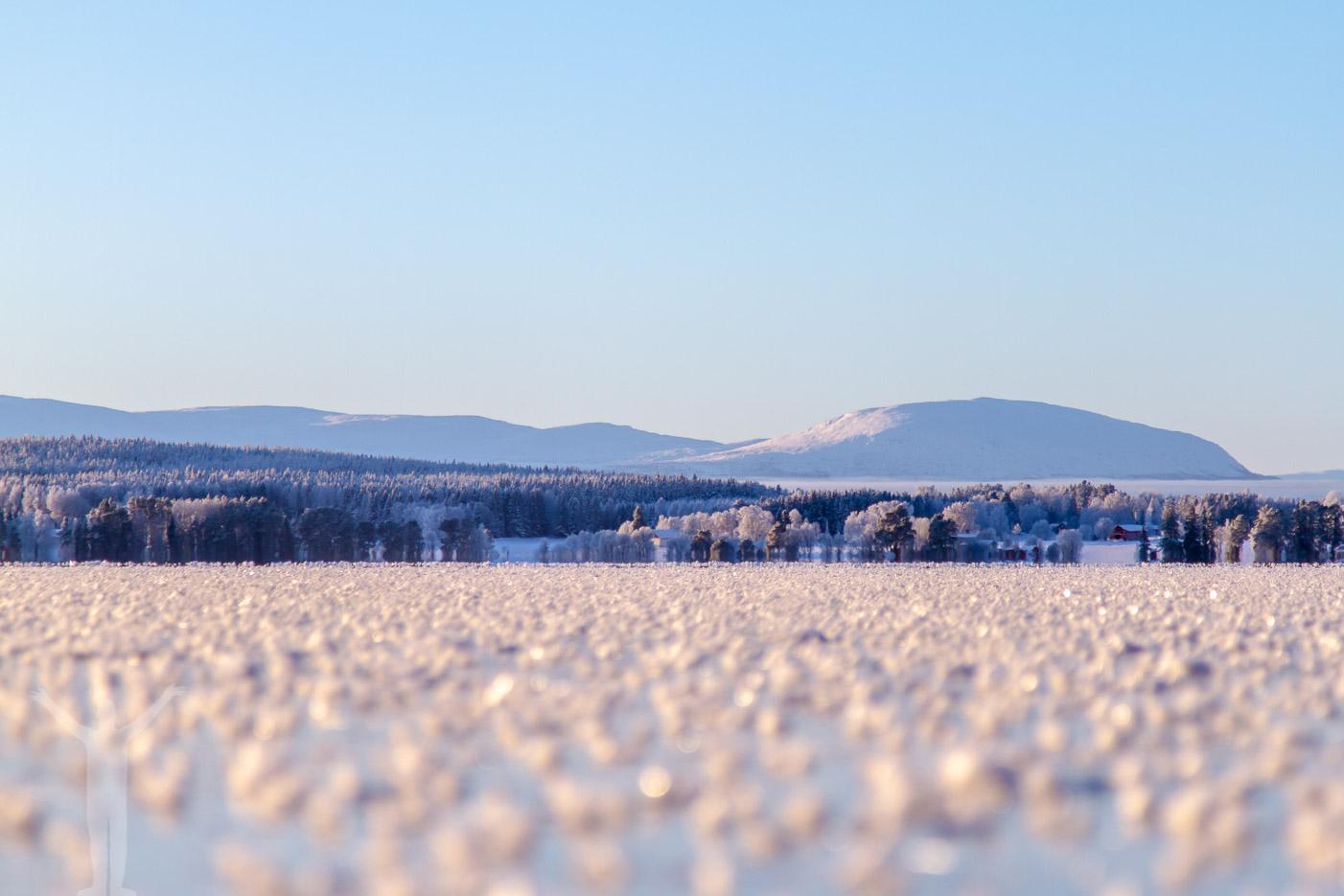 Oviksfjällen med snö