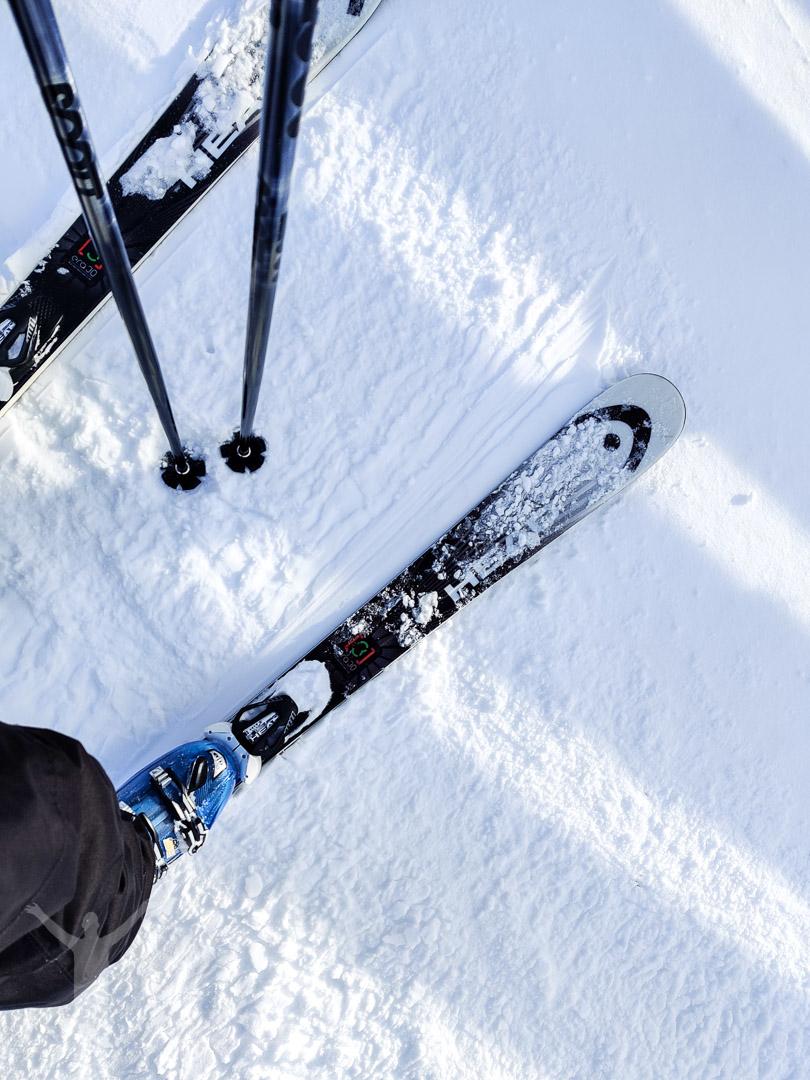 Åka skidor i Björnrike