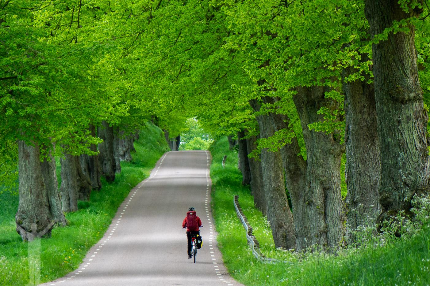 Cykla på Sydkustleden