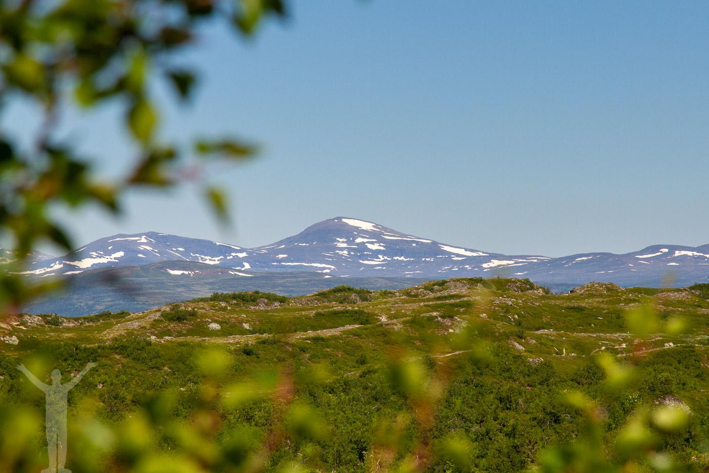 Fjällvyer från toppen av Funäsdalsberget