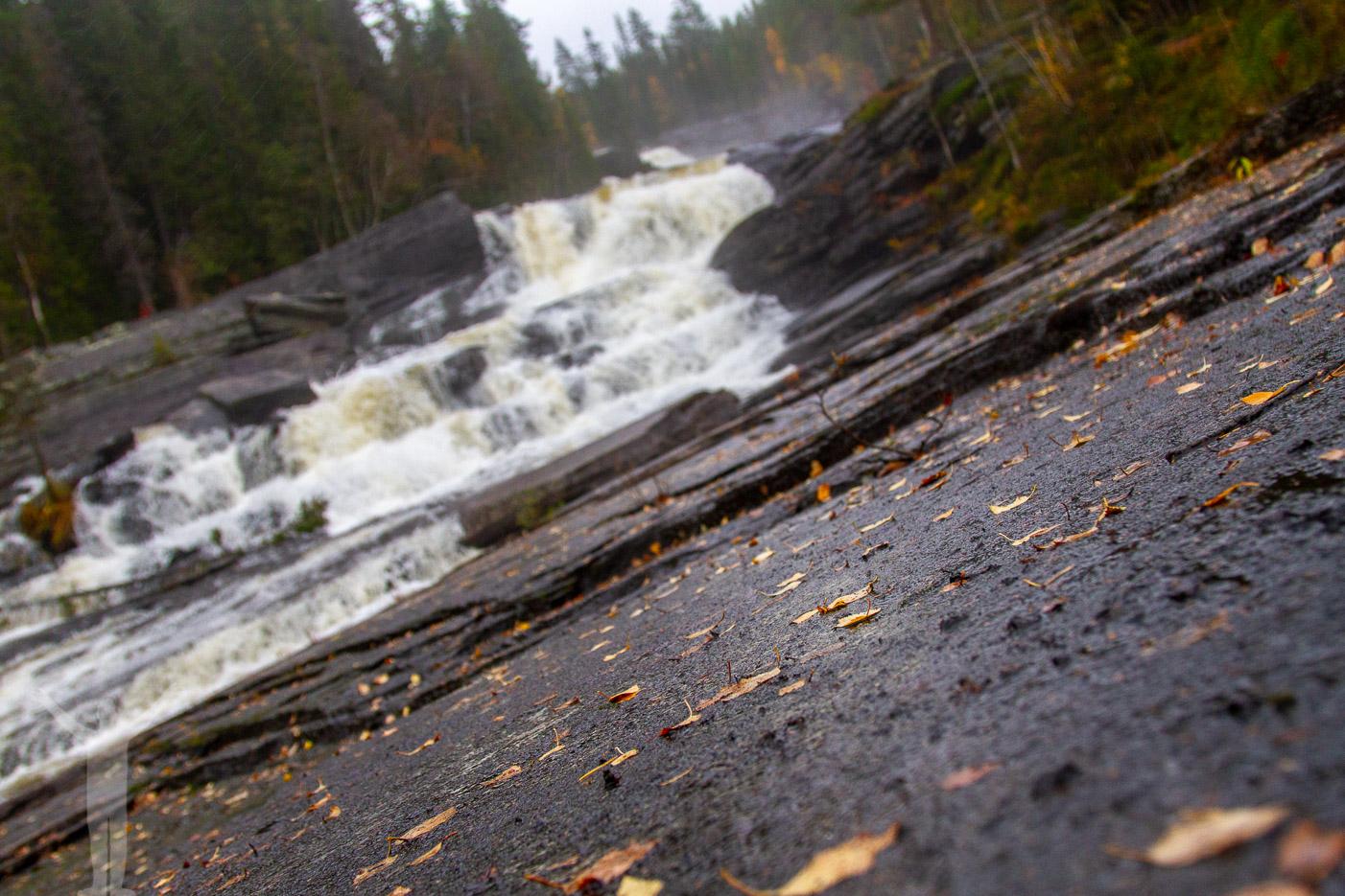 Höstlöv på en halv klippa vid vattenfallet